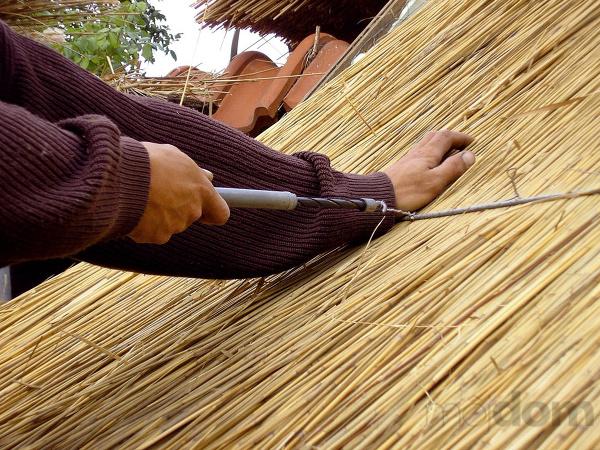 strecha-