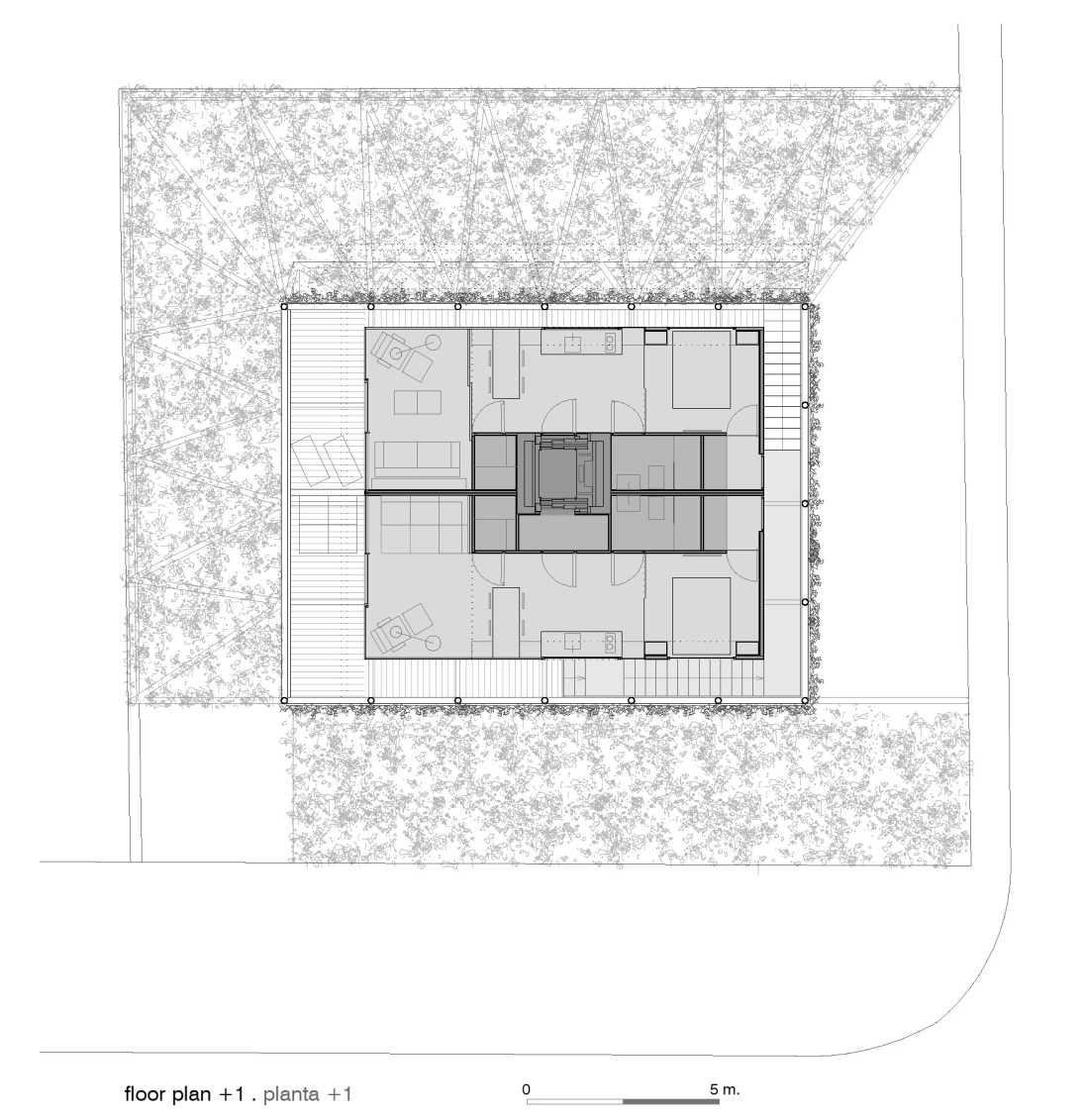 c_floor plan +1