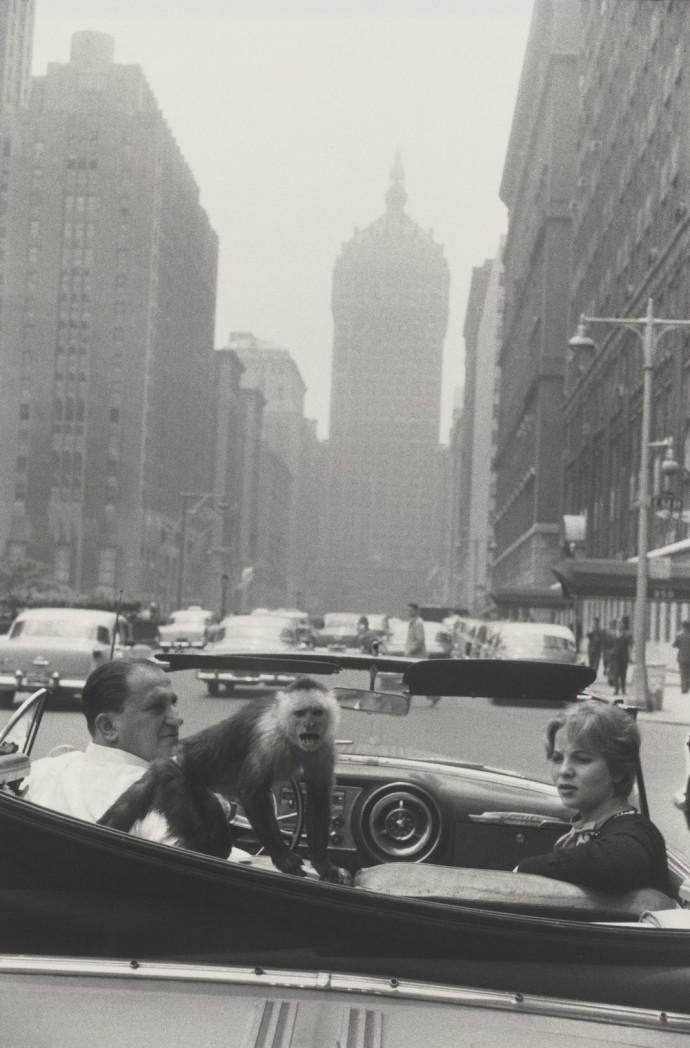 11_sfmoma_winogrand_parkavenuenewyork_1956